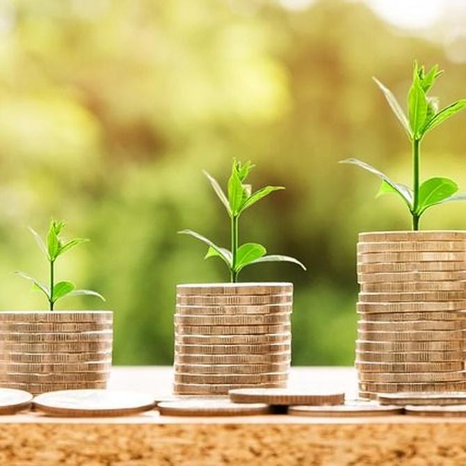 Reformas que aumentan el valor de tu hogar