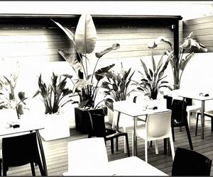 Diseño de interiores - Terraza Bar