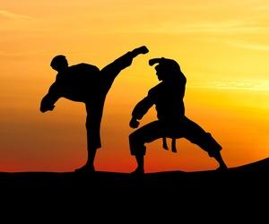 Ropa deportiva para las artes marciales