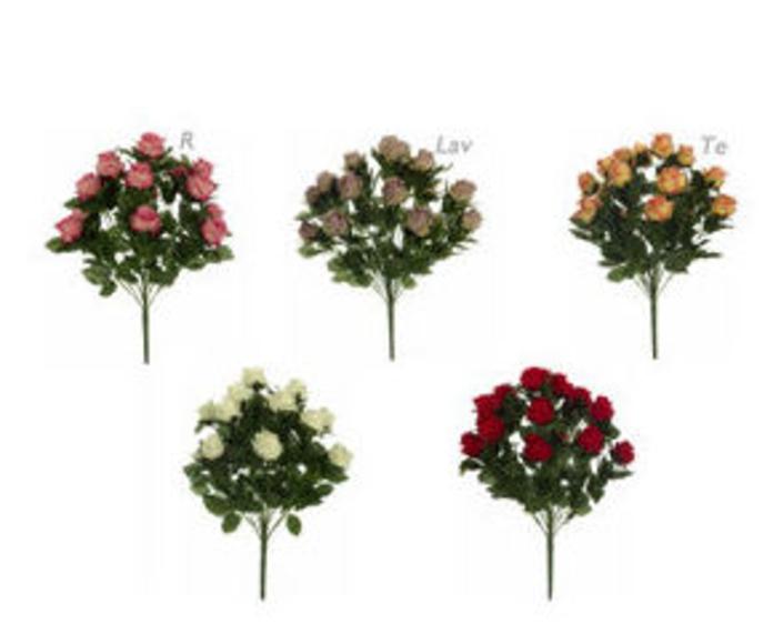 Rgr Rosas Deco X18
