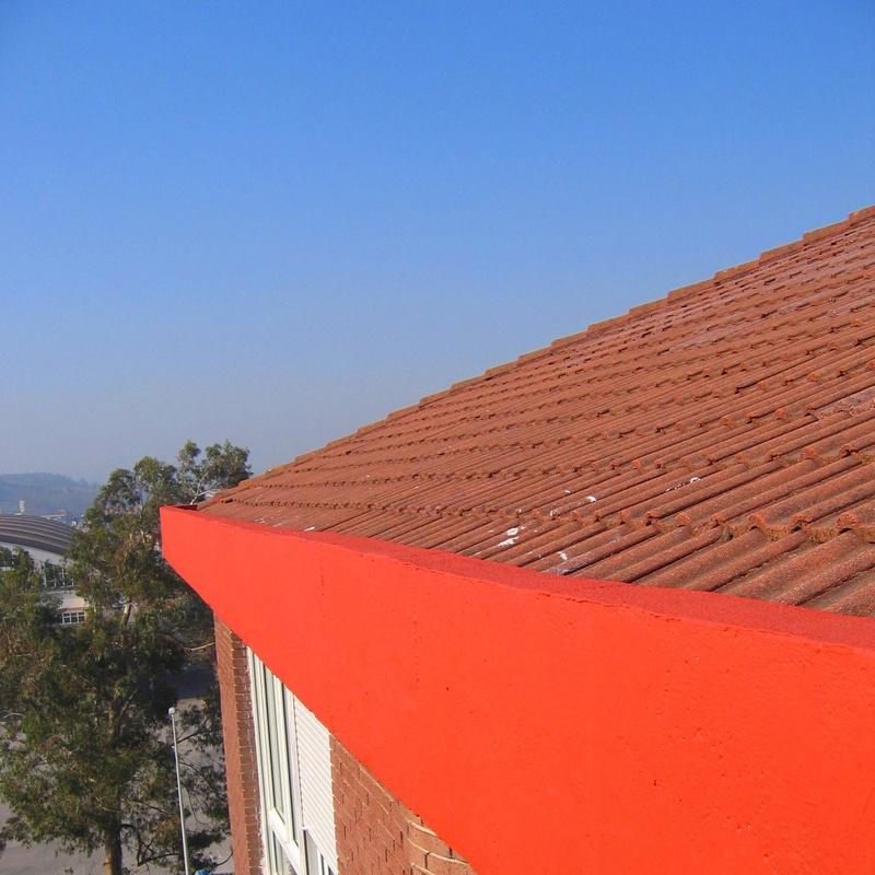 Revestimiento de pintura anticarbonatación en alero de hormigón Torrelavega.