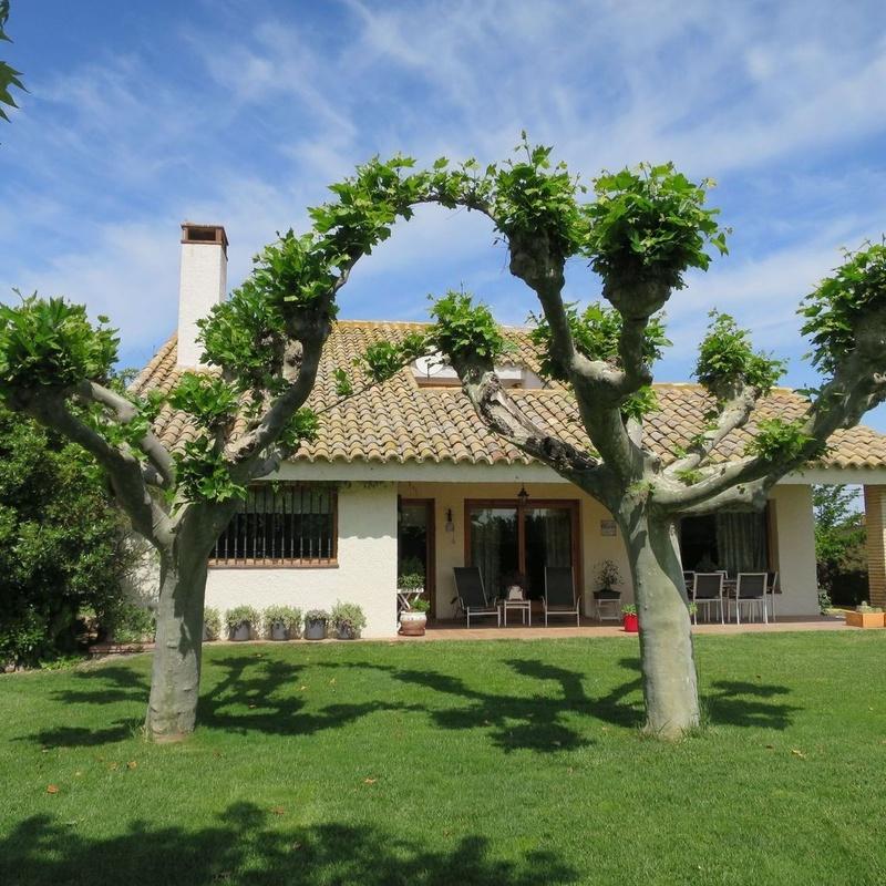 Torre Pinar Urbanización, chalet individual, 5 dormitorios, gran jardín:  de Fincas Goya