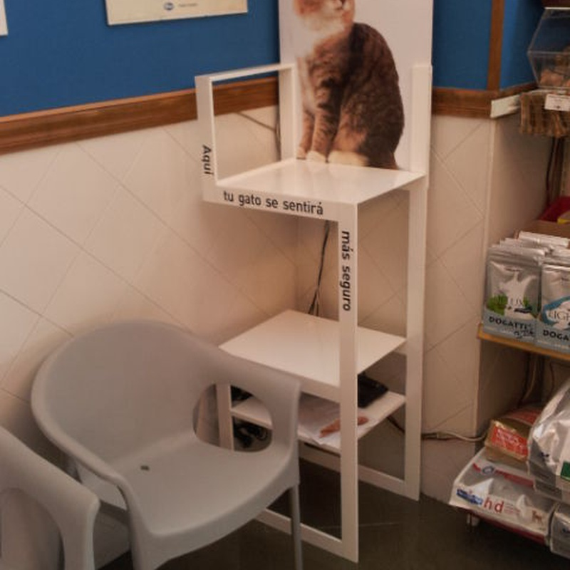 Cat waiting area