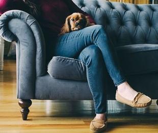 Motivos por los que dejar la limpieza de tu sofá en manos de profesionales