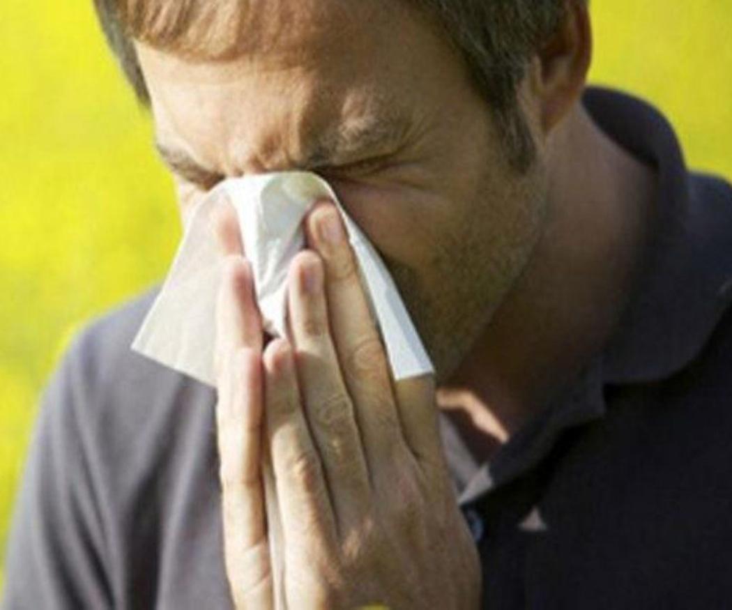 Síntomas de la alergia a los gatos