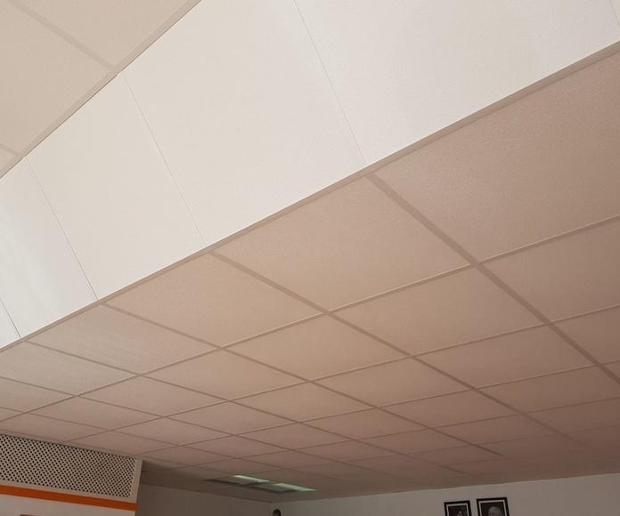 Falso techo oficina Icod: Trabajos de Ferso Servicios Integrales
