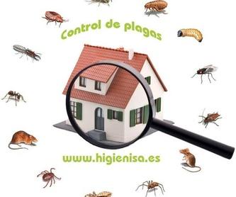 DESRATIZACIONES ALICANTE: Control de roedores, ratas y ratones: Nuestros Servicios de Higienisa y Control de Plagas, Desinfección, Fumigación