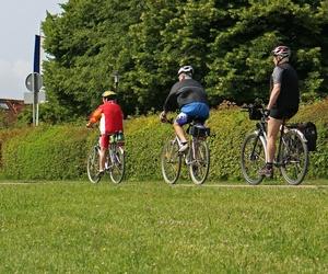Bicicletas de paseo y de carretera