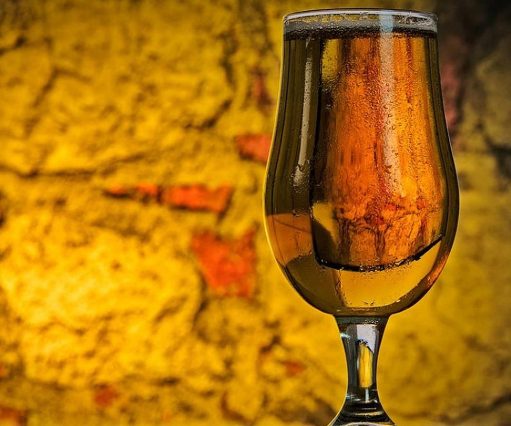 El lúpulo, el elemento clave de la cerveza