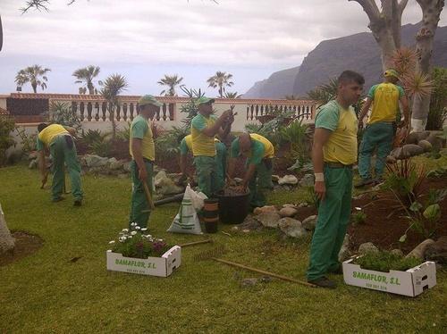 Construcción de jardines en Santa Cruz de Tenerife