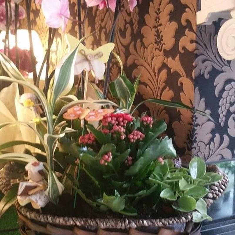 Arreglos florales: Servicios de Floristería Albuerne