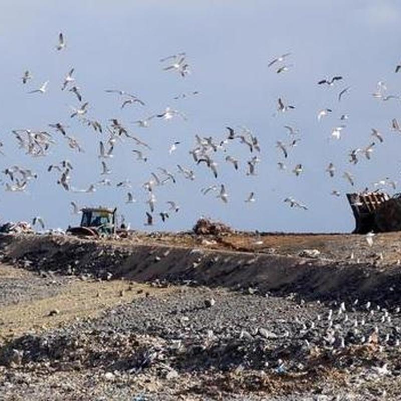 Vertedero de resíduos sólidos urbanos