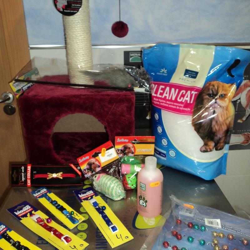 Juegos y complementos para los felinos: Servicios de Clínica Veterinaria Rocafort