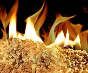 Biomasa Pellet