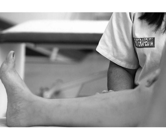 Terapias con animales: Servicios Residencia y CD. de Residencia y Centro de Día Santa Ana