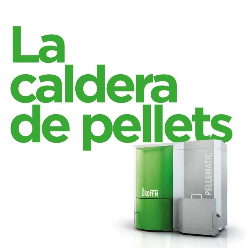 Calefacción con pellets de la marca Ökofen: Productos de Cadbioex