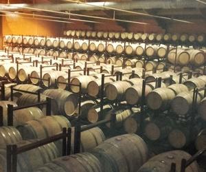 Climatización industrial en Boadilla del Monte | Estein Instalaciones, S. L.