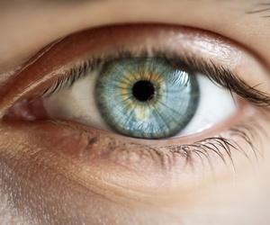 Todos los productos y servicios de Clínicas oftalmológicas: Clínica Rementeria