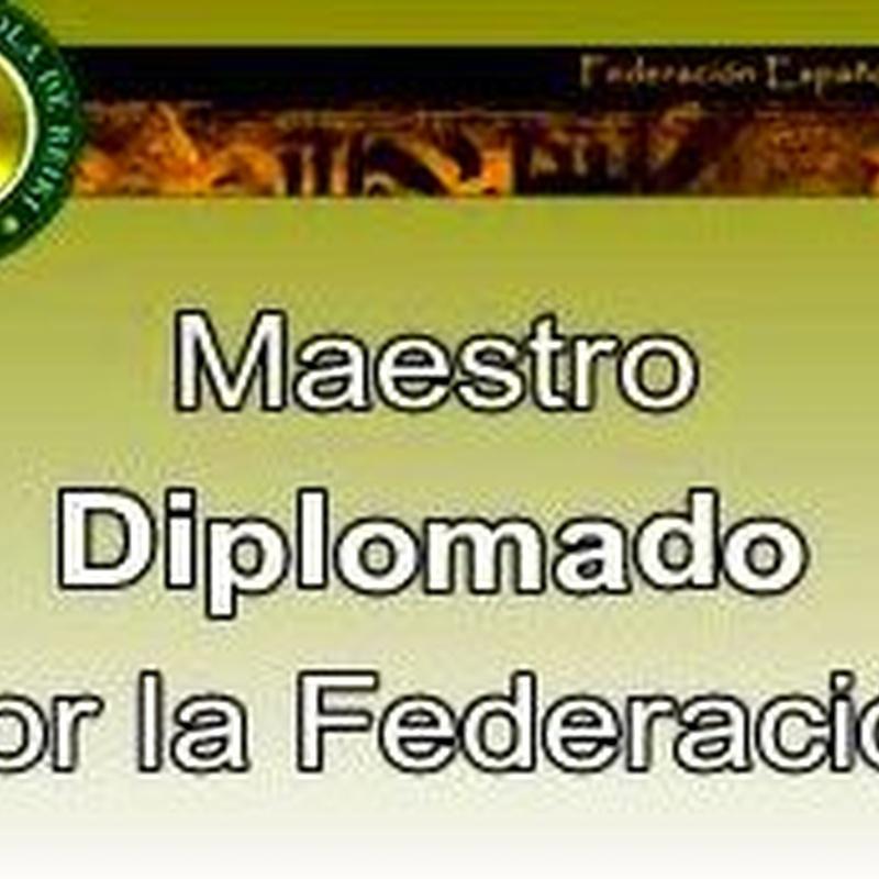 Maestro Diplomado por la Federación de Reiki