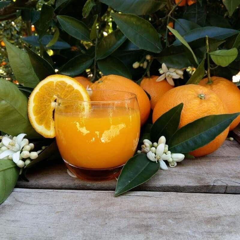 Naranjas de zumo pequeño 10 kg: Productos de Naranjas Julián