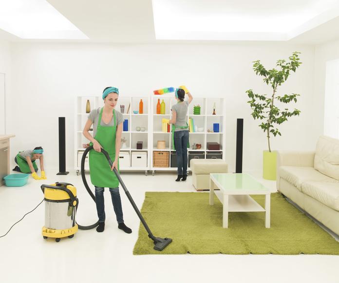 Hogares particulares: Servicios de limpieza de Blau