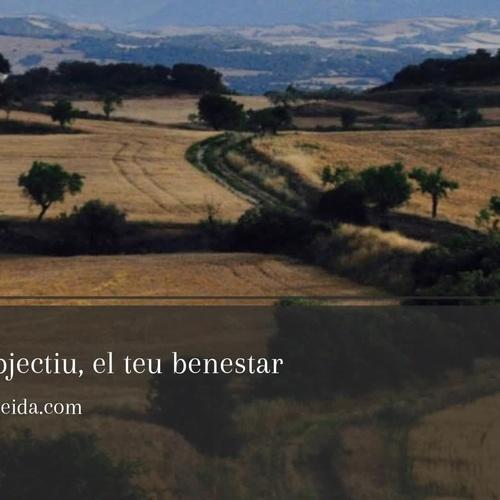 Terapia de parejas en Lleida | Mercè Audet Bordoll