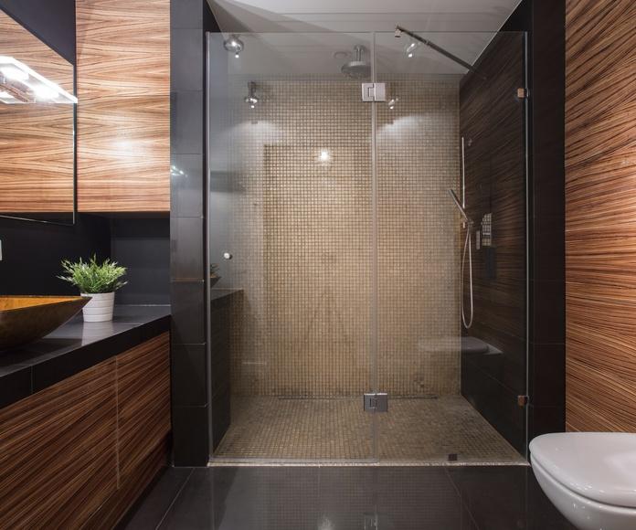 Mamparas de baño: Productos de Aluminis Solé