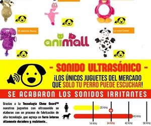 Tienda de accesorios animales en Santa Cruz de Tenerife | Animall