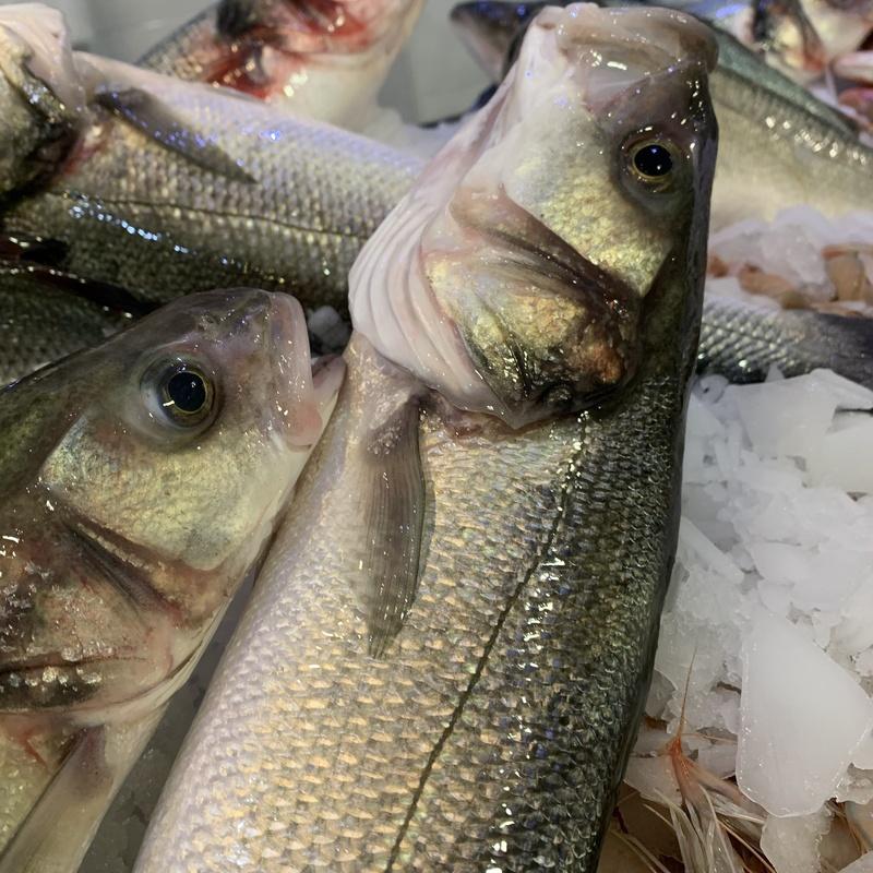 Pescados frescos: Pescados y mariscos de Pescadería Motrileña
