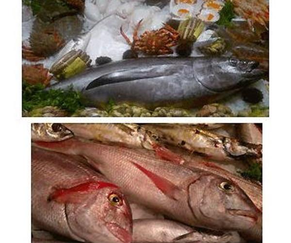 Pescadería con servicio a domicilio en Pozuelo de Alarcoón, Aravaca, Humera, Boadilla del Monte, Majadahonda y Las Rozas