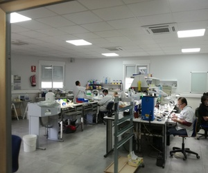 Prótesis dentales en Valencia
