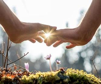 Flores de Bach:  Cuidado quiropráctico  de L'illa Quiropràctica