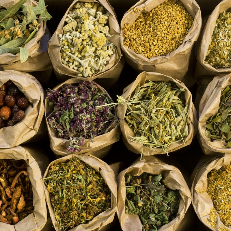 Hierbas Medicinales: Salud y Belleza de Herbolario Salud y Belleza
