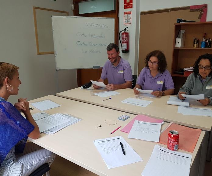 servicio en los centros colaboradores: Proyectos y Servicios de Asociación Domitila