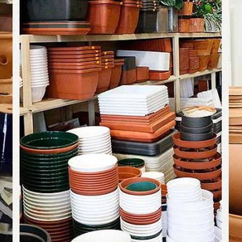 Macetas para plantas de exterior: Productos de FLORISTERÍA CASA BASUSTA