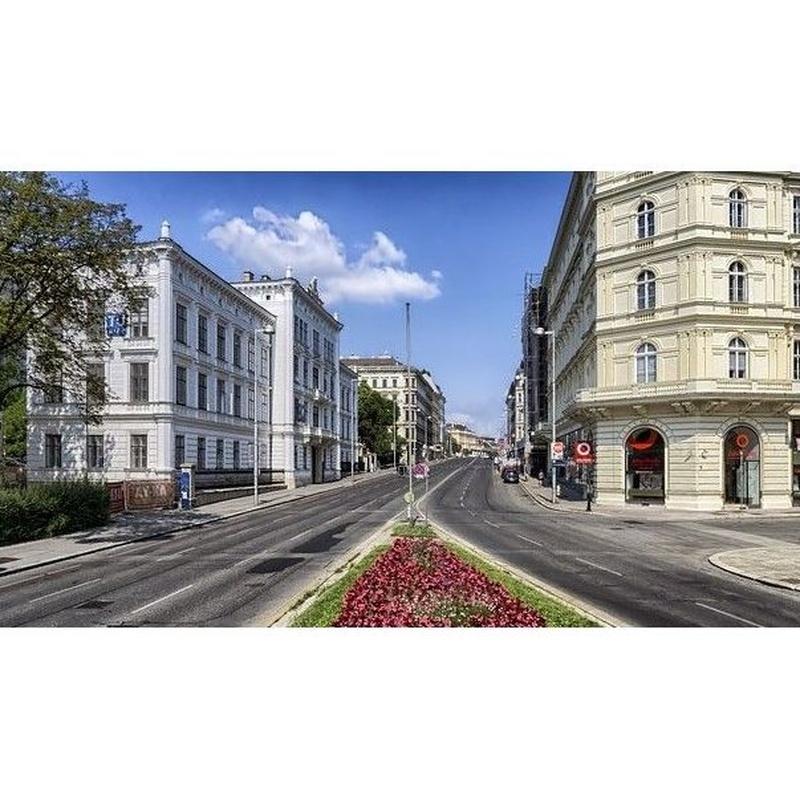 Redacción de contratos de arrendamiento: Servicios de Benavent Abogado