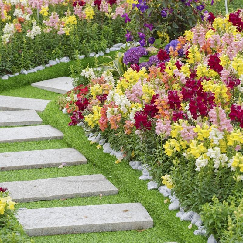 Diseño de jardines: Servicios de Jardinería Monte de Oro