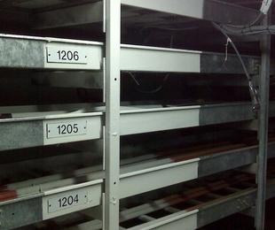 Sistemas Cortafuegos en bandejas eléctricas