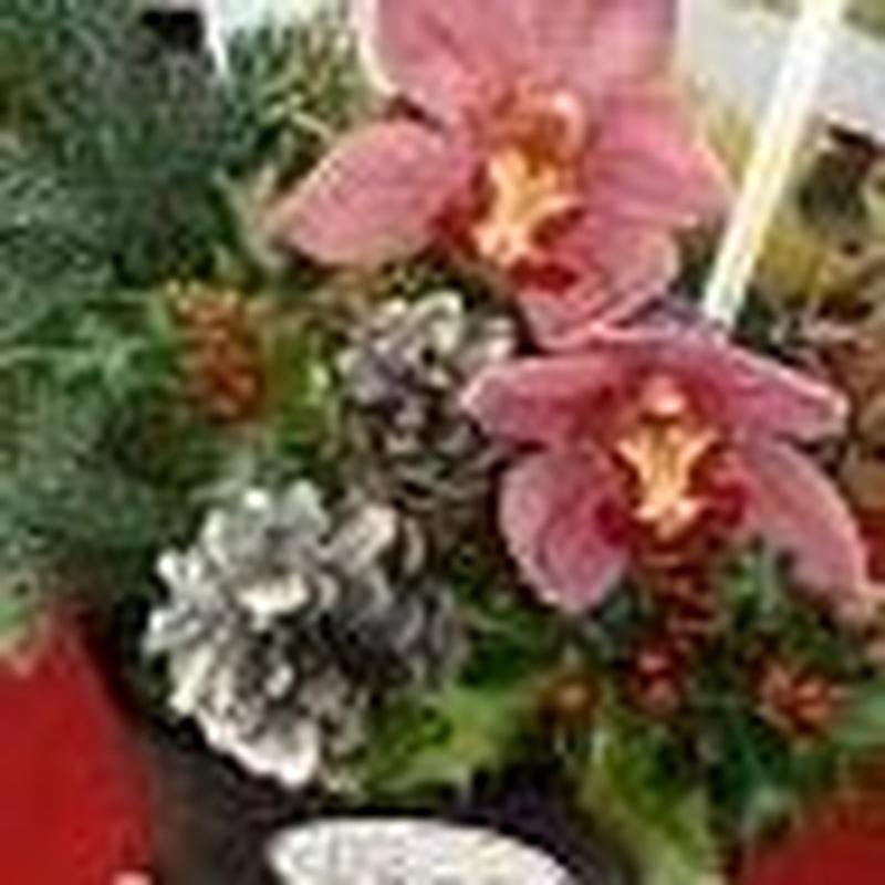 Composiciones de Navidad: Arte floral de Isabella Arte Floral