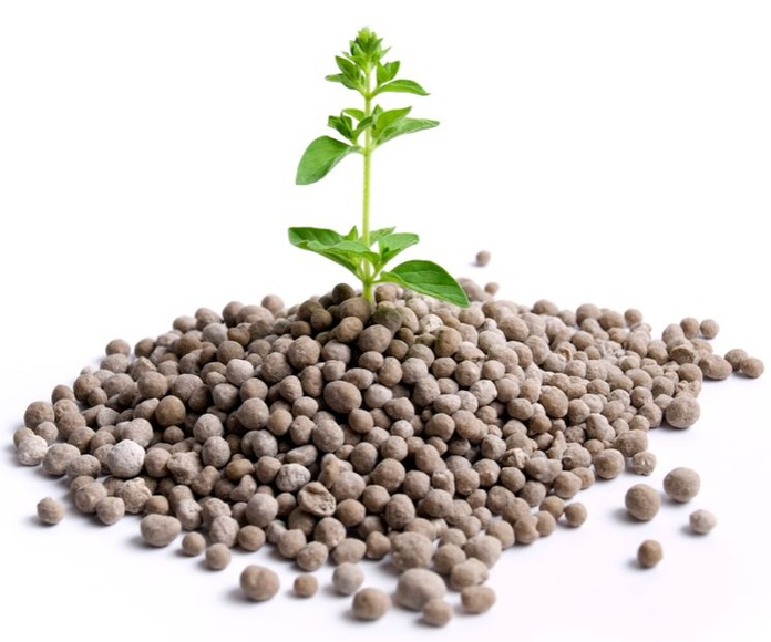 Fertilizantes: Servicios de Isaticar