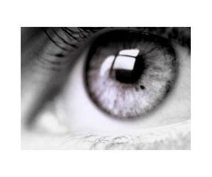 Todos los productos y servicios de Ópticas: Óptica Montoreña