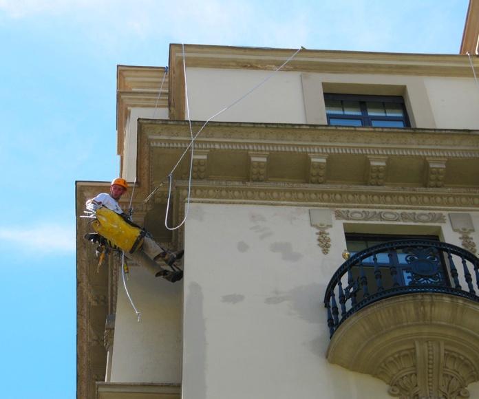 Colocación de pinchos antiaves en Santander.