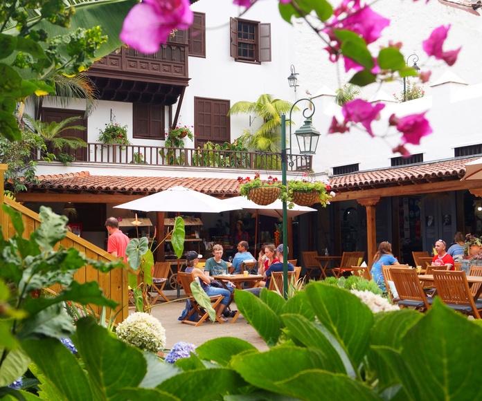 Nuestra Maravillos Terraza Bar, en nuestro patio Canario, con las únicas vistas al Drago Milenario