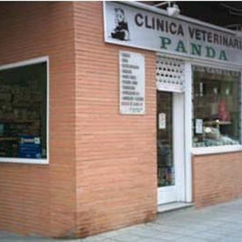 Centro veterinario en Fuenlabrada | Clínicas Veterinarias Panda