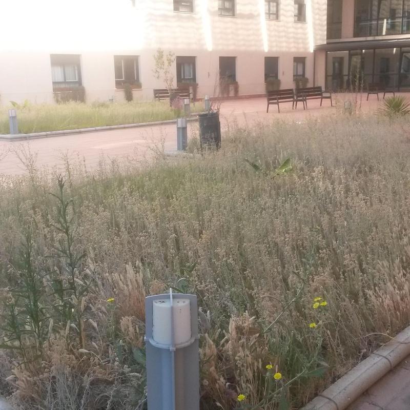 CÉSPED ARTIFICIAL : Servicios de Jardines y paisajes
