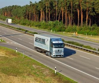 Transporte: Servicios de Gesticotrans