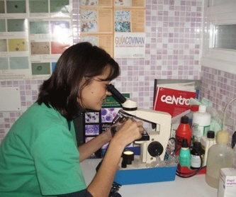 Visitas a domicilio: Servicios de Clínica Veterinaria Pirámides