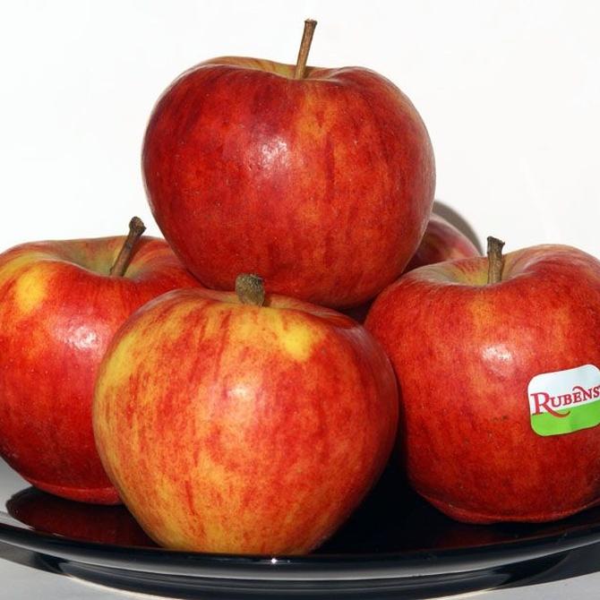 Más alimentos dañinos para los perros: algunas frutas