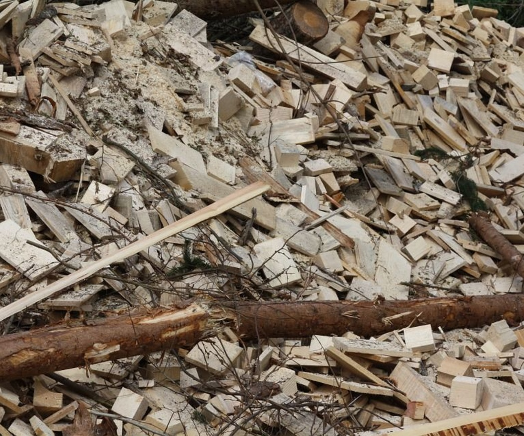 ¿Por qué una caldera de biomasa?