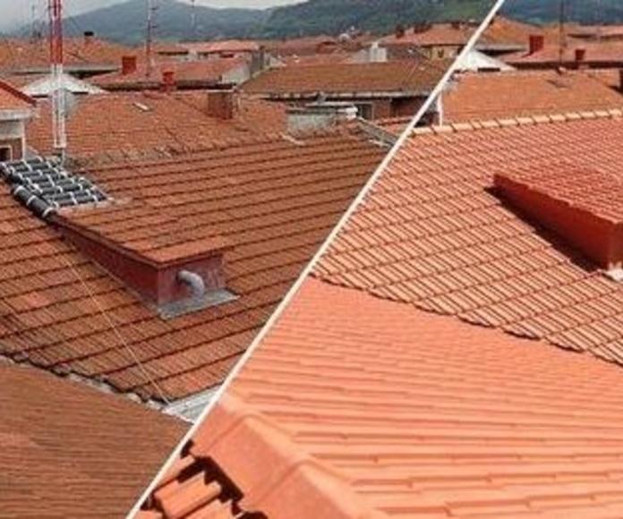 Rehabilitación de tejados Vizcaya: Trabajos realizados de Impermungi, S.L.